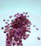 Garnet Pink Lot